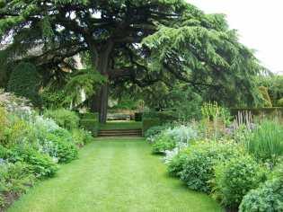 4-the-old-garden